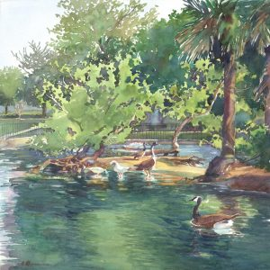 Bird's Little Acre - en plein air watercolor painting of geese on the water by Frank Costantino