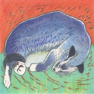 Blue Cat on Orange & Green Field - color drawing of sleeping cat by Frank Costantino