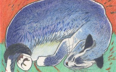 Blue Cat on Orange & Green Field – color drawing of sleeping cat by Frank Costantino