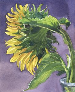 Flower's Radiance - watercolor floral painting by Frank Costantino