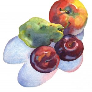 Fruit Casts Shadows Too -watercolor still life painting by Frank Costantino