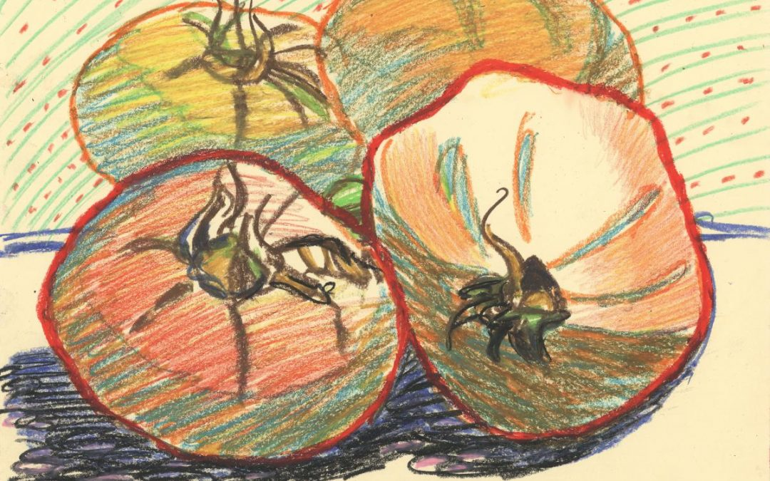 Garden Tomatoes II – oil pastel still life drawing