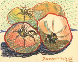 Garden Tomatoes II - colored pencil still life drawing by Frank Costantino