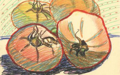 Garden Tomatoes II – oil pastel still life drawing