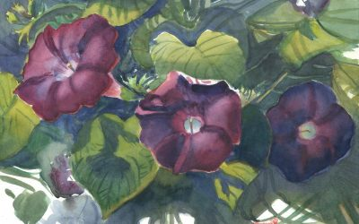 Glories' Brief Etude – watercolor floral painting