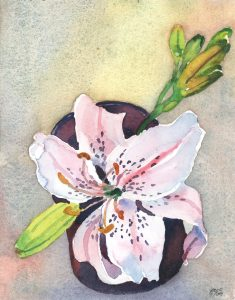 Hemerocallis in a Cup - watercolor floral painting by Frank Costantino