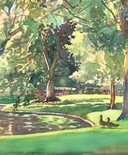 Long Light- Public Garden's Duck Pond – en plein air watercolor landscape painting