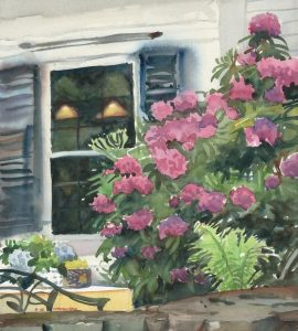 Marshfield Rhody - en plein air watercolor floral painting marshfield ma by Frank Costantino