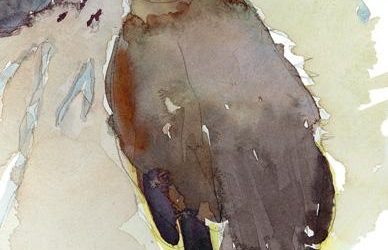 Orphan Swallow – watercolor painting of bird