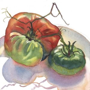 Season's Last Tomatoes - watercolor still life painting by Frank Costantino