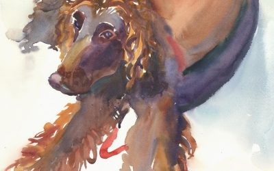 Studied Response – Roxcy's Hooper – watercolor painting of dog