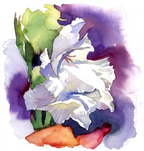 White Gladiolus - watercolor floral painting by Frank Costantino