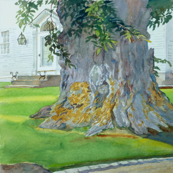 Nature & Man, Elm On Spring Street – en plein air watercolor landscape painting with tree